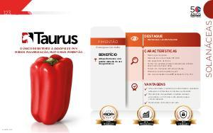Taurus - Solanáceas