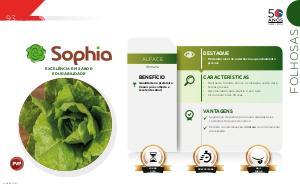 Sophia - Folhosas