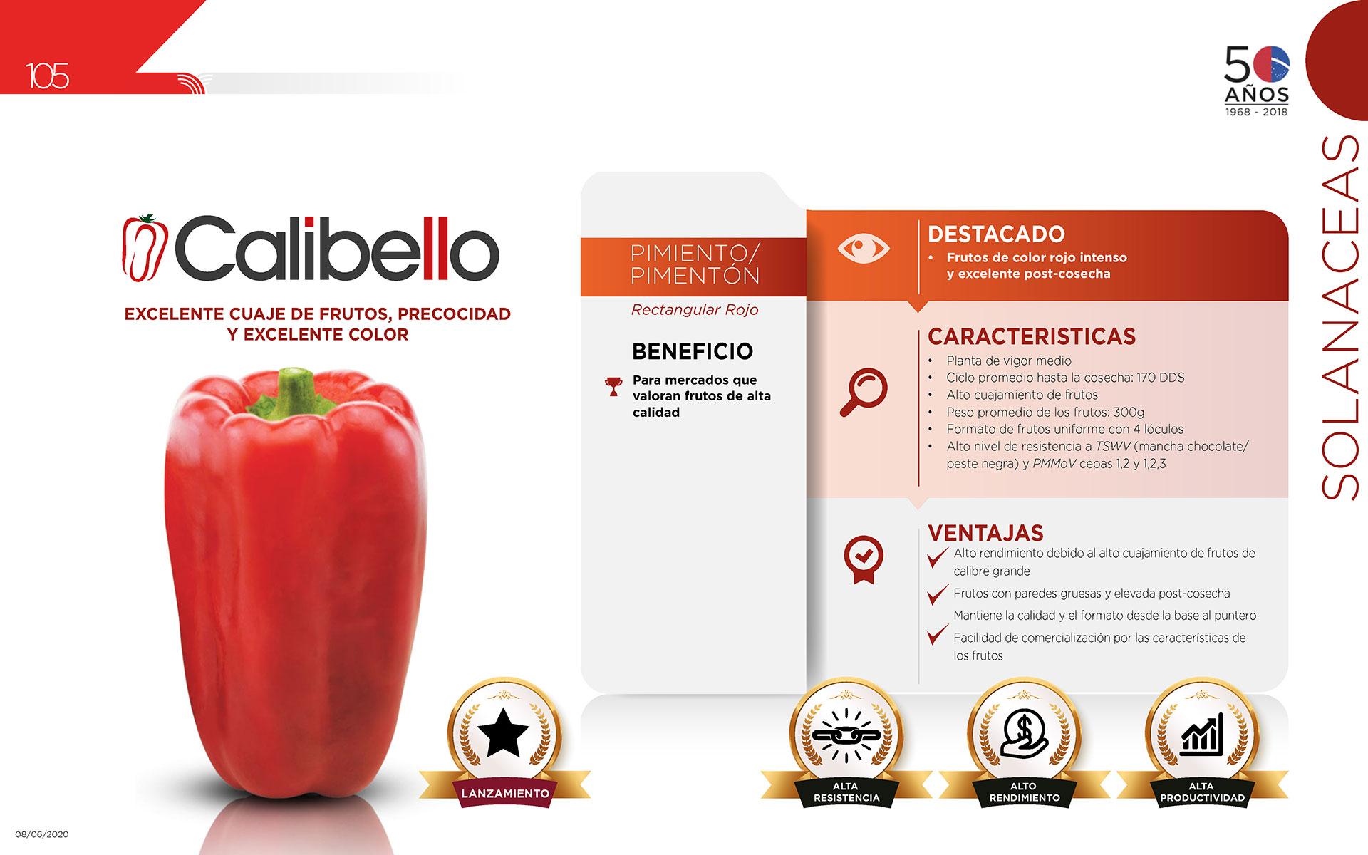 Calibello - Solanaceas