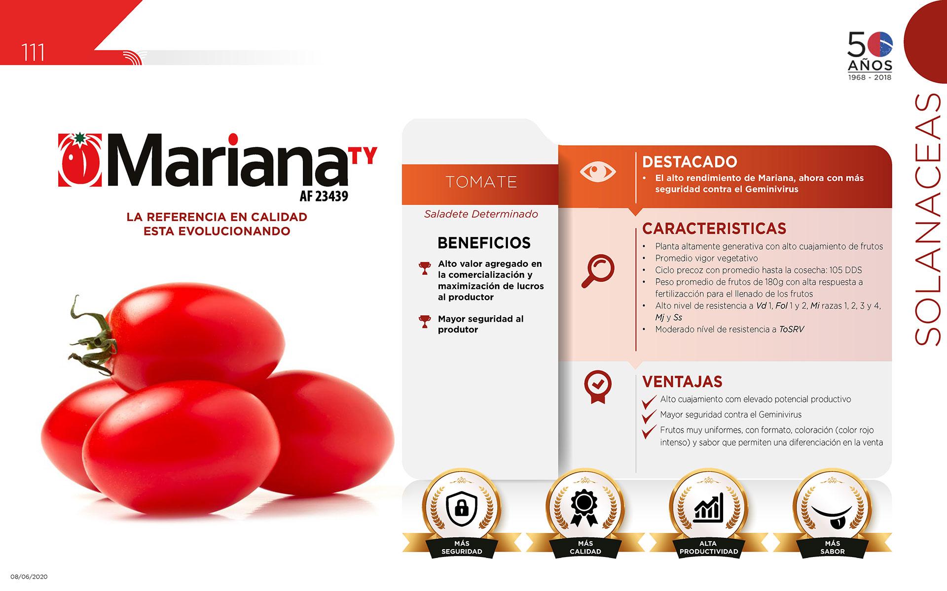 Mariana TY - Solanaceas