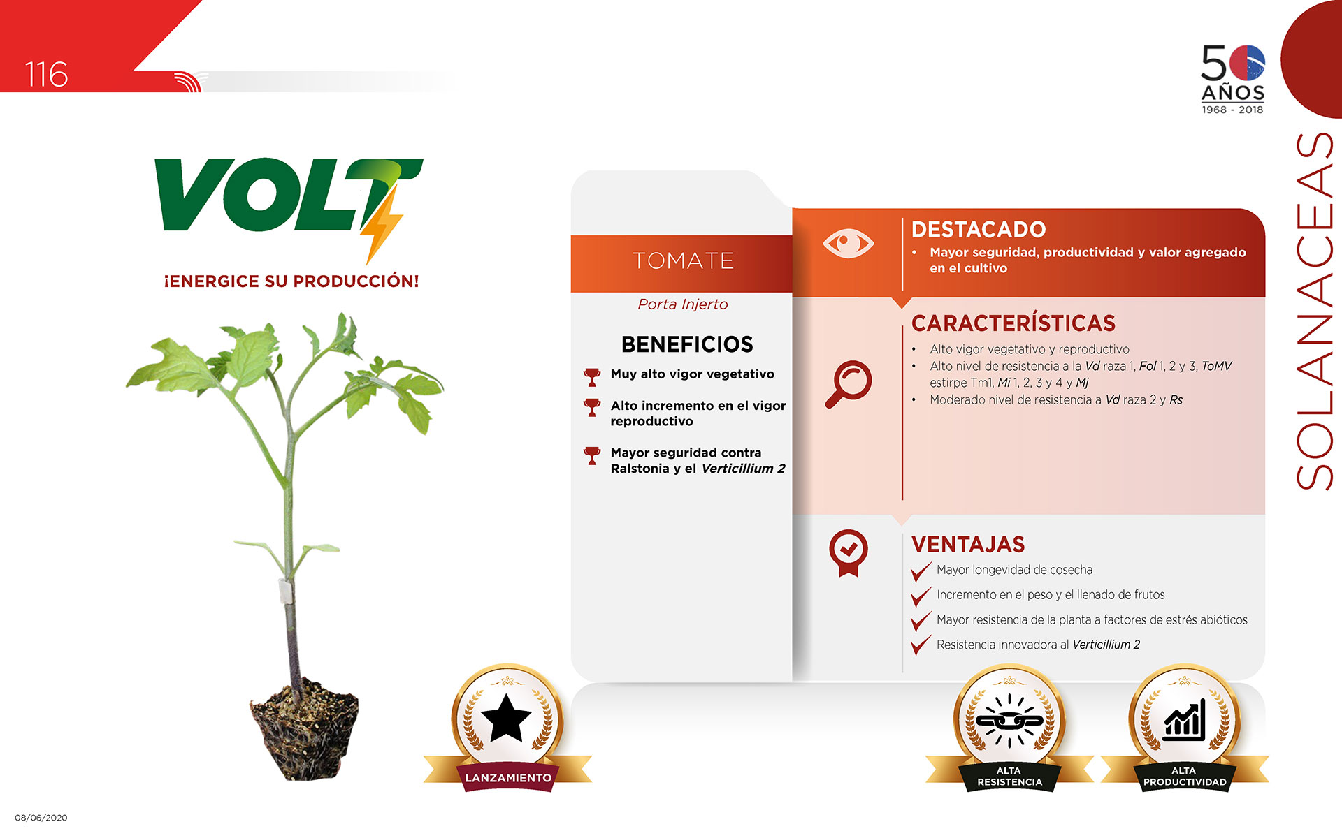 Volt - Solanaceas