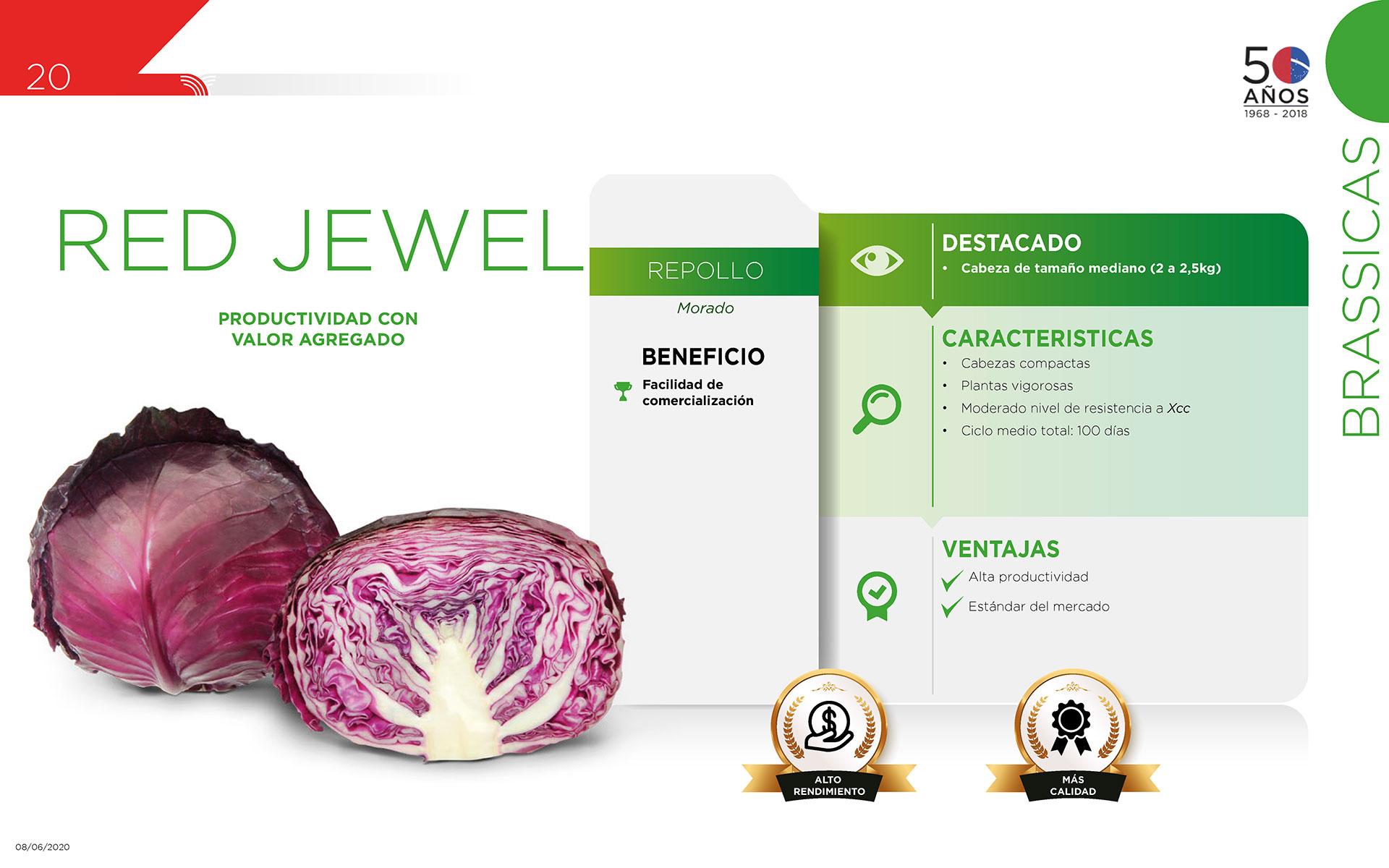 Red Jewel - Brassicas