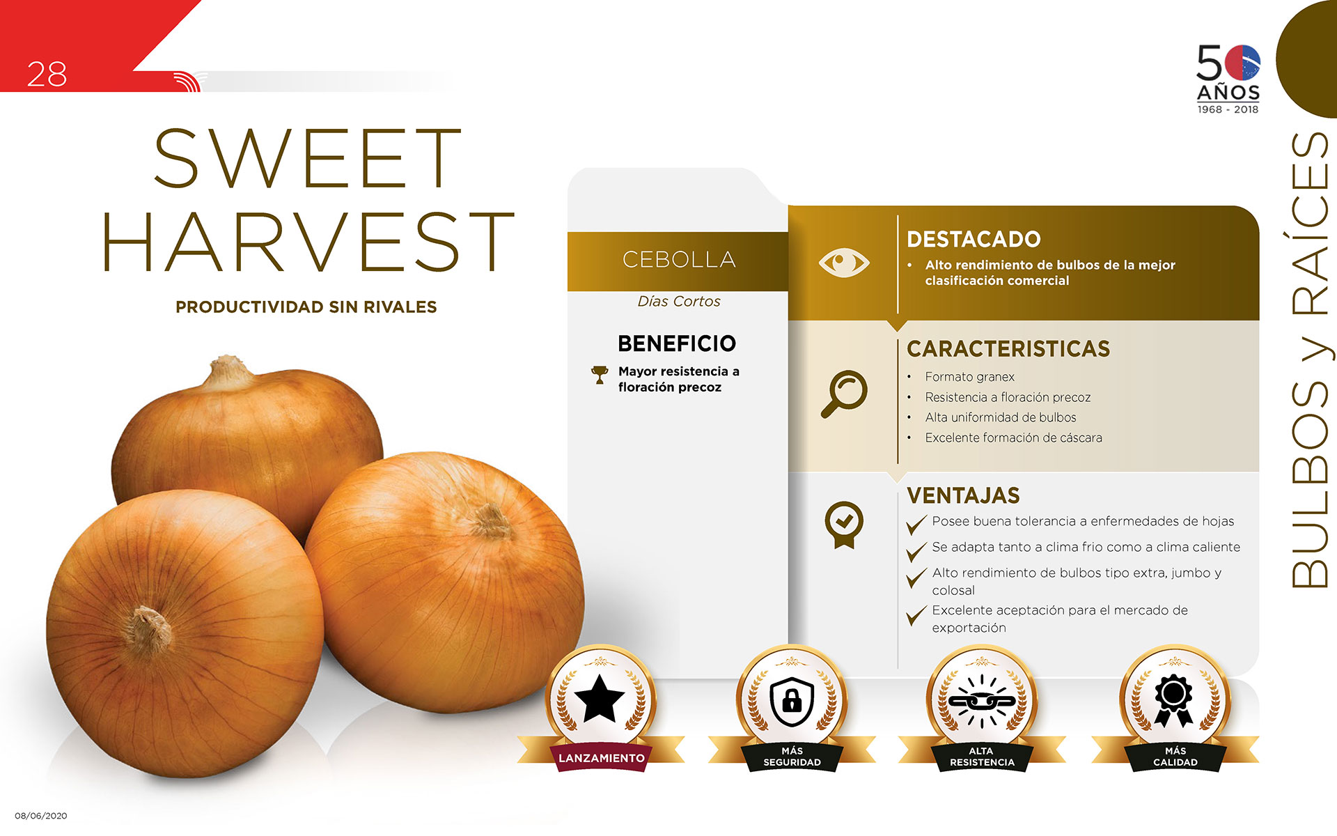 Sweet Harvest - Bulbos y Raíces