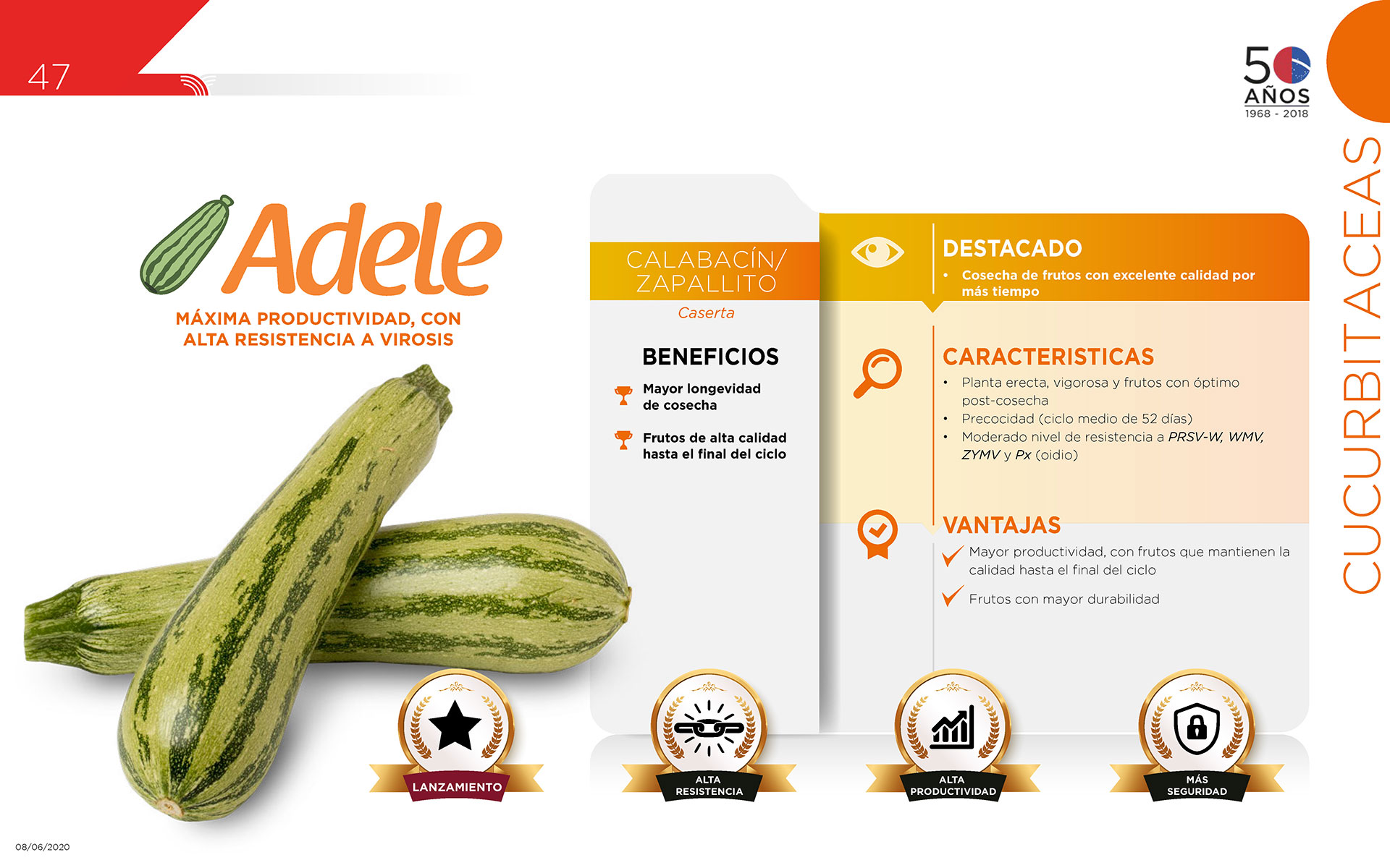 Adele - Cucurbitaceas