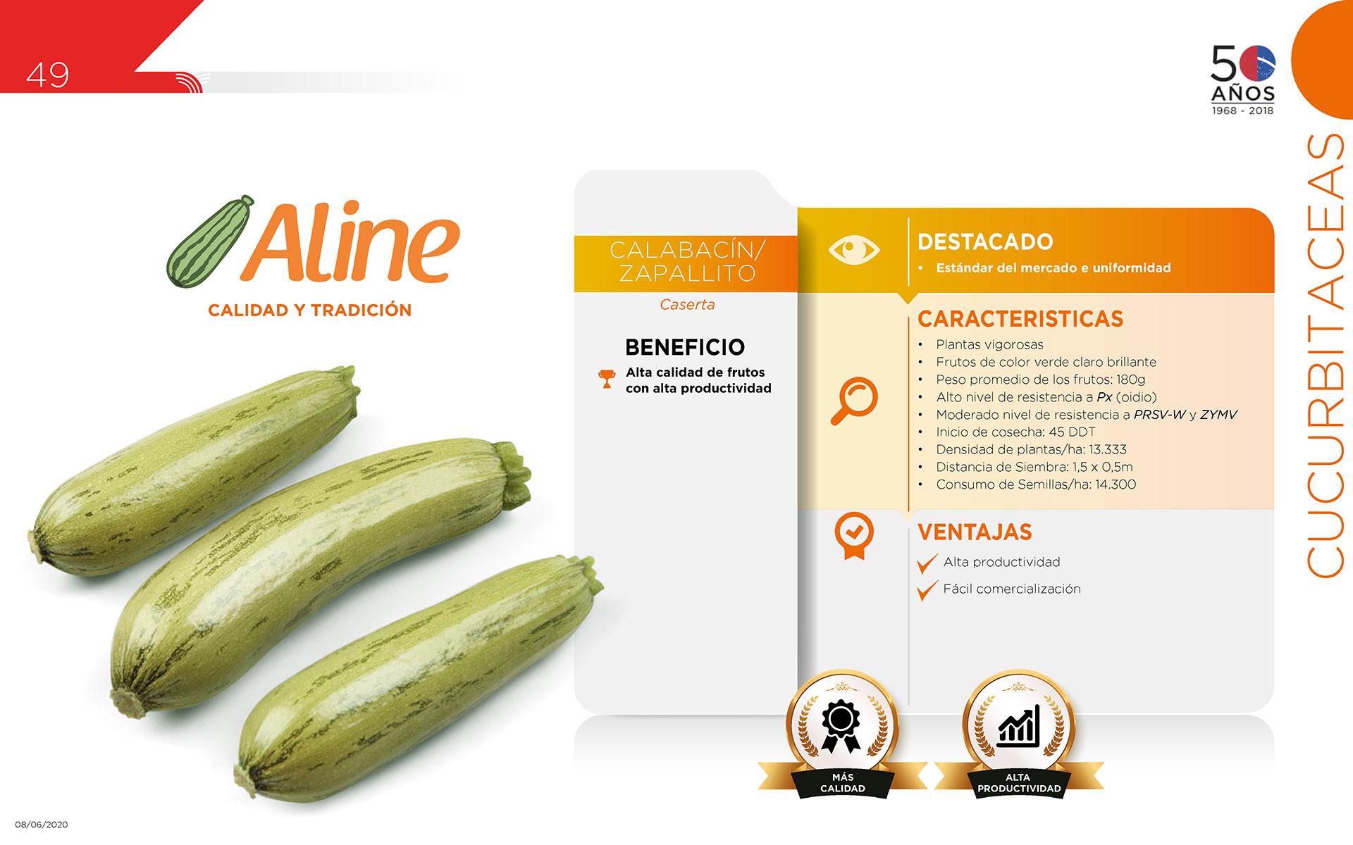 Aline - Cucurbitaceas