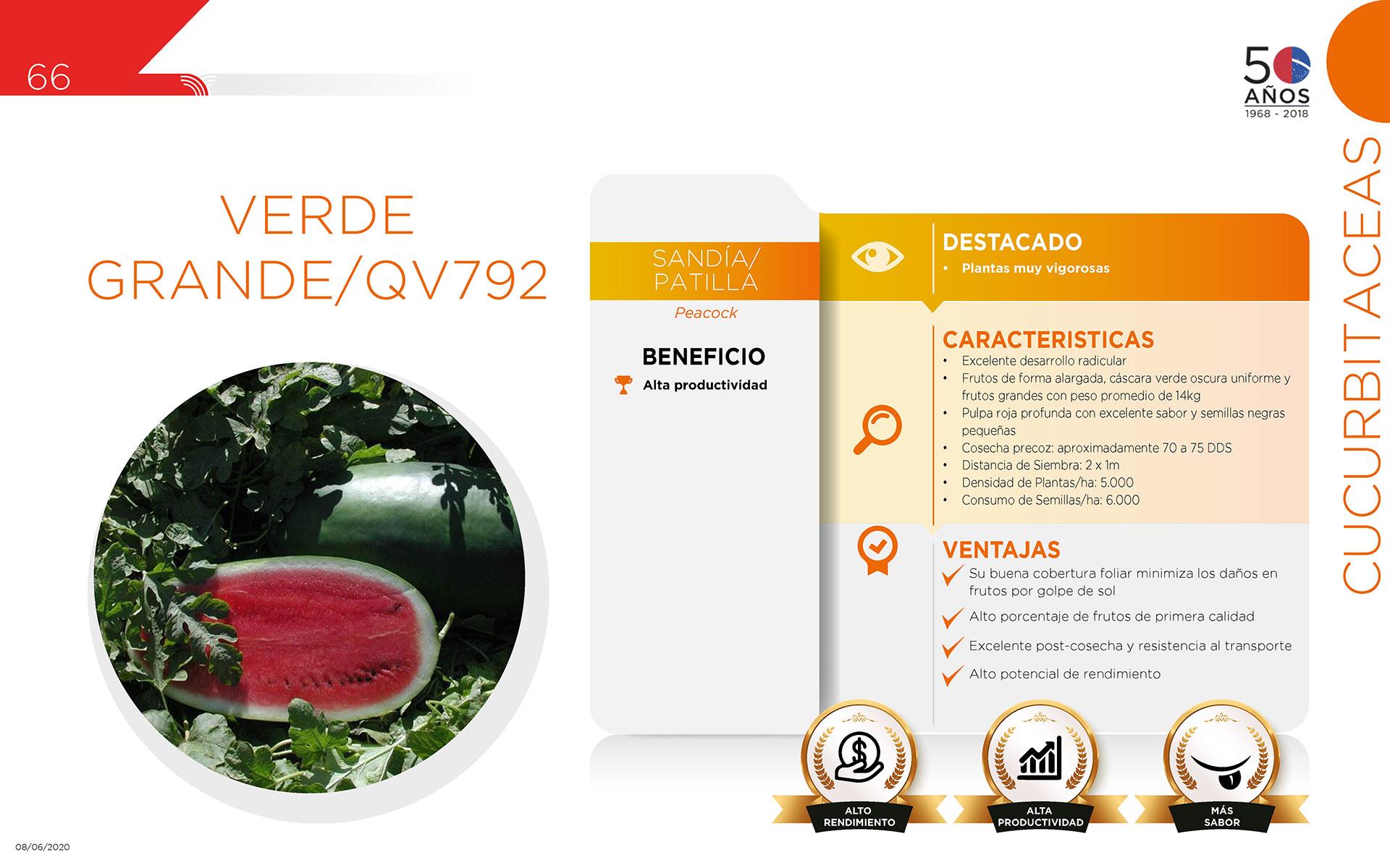 Verde Grande/QV792 - Cucurbitaceas