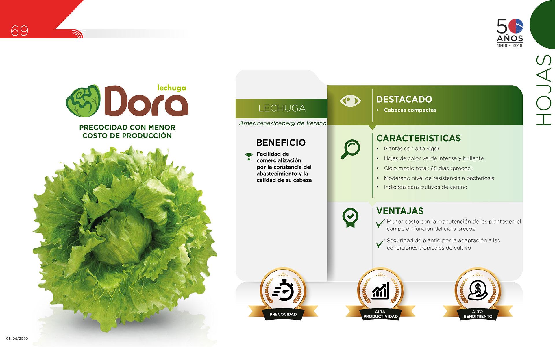 Dora - Hojas