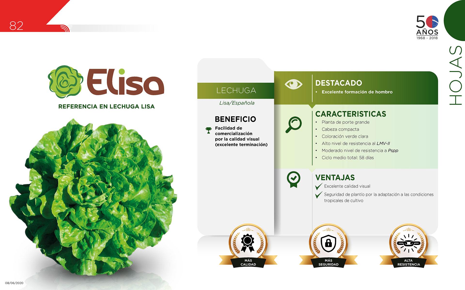 Elisa - Hojas
