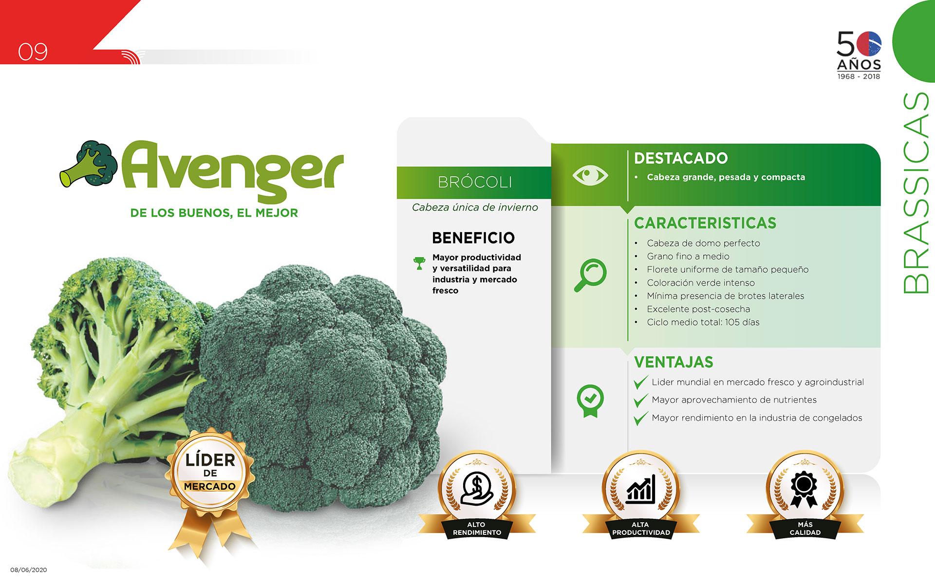 Avenger - Brásícas