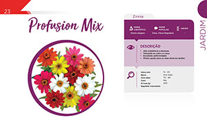 Profusion Mix - Corte