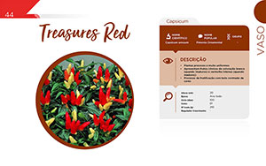 Treasures Red - Vaso